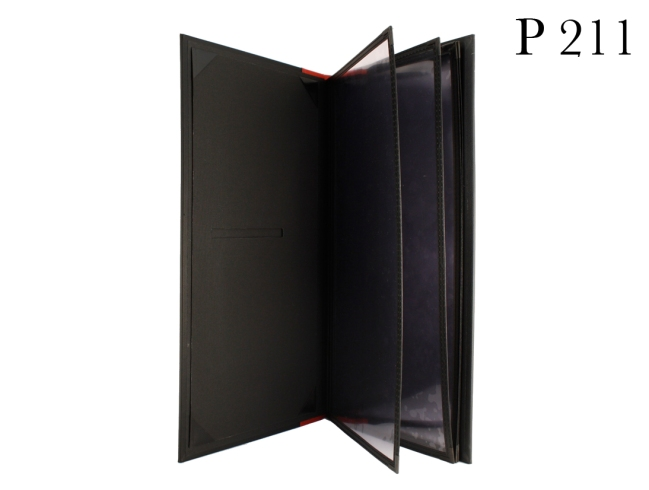 P211 Sakana inside