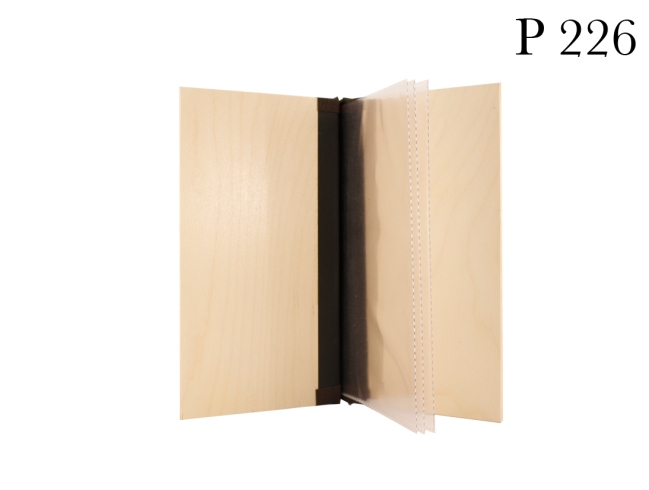 P226 Cho Inside